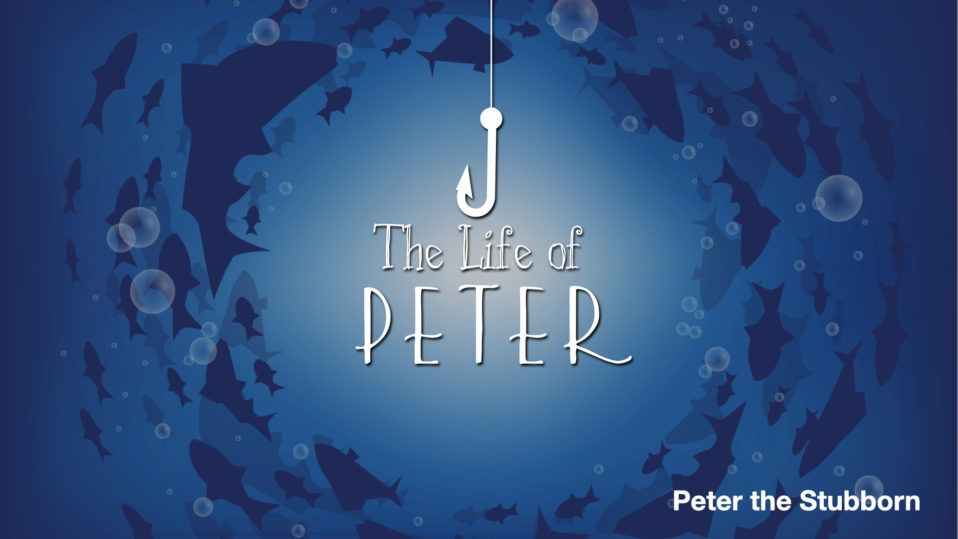 Peter the Stubborn